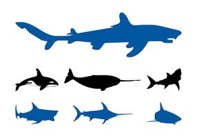 Sea-animals-graphics-set