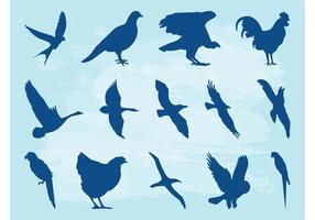 Birds Silhouette Set
