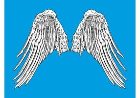 Angel wings graphics