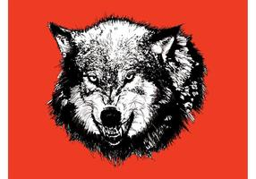 Angry Wolf Head Graphics