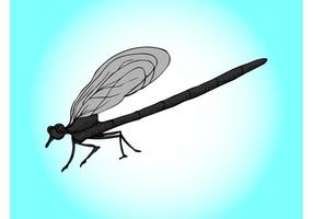 Cartoon Dragonfly Graphics