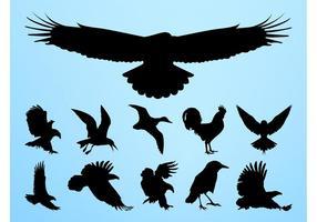 Graphiques de silhouettes d'oiseaux