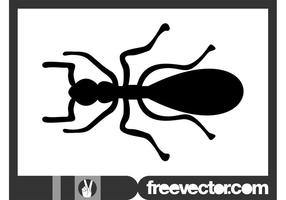 Ant Silhouette Graphics