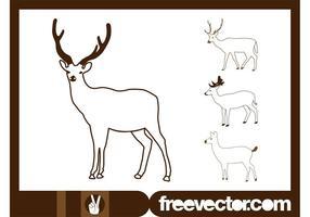 Ciervos dibujos vectoriales