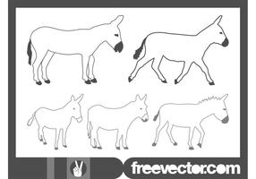 Vector-donkeys-graphics