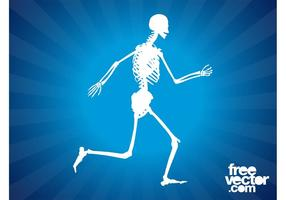 Vector-running-skeleton-graphics