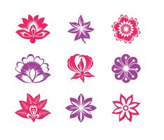 Blooming-flowers-graphics-set