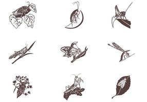 Insects-on-leaves-vector-set