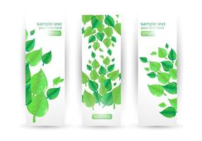 Leaf-banner-vector-set