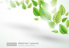 Leaf-background-vector