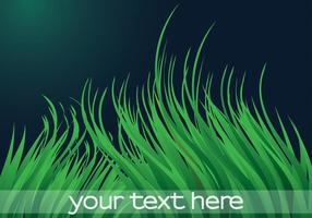 Green-grass-vector-background
