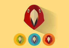 Portraits de vecteurs perroquets