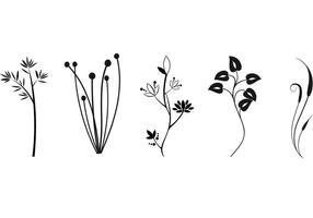 Freie Pflanzenvektoren