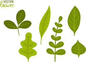 Pacote de vetores de folhas verdes grátis