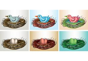 Free-vector-bird-in-nest-with-eggs-and-birds