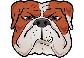 Stier Hond