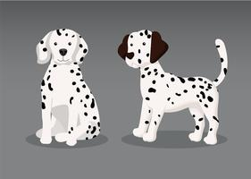 Dalmation Puppy Vector