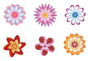 Vetores de flores polinésias coloridas
