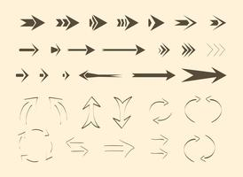 Flechas y líneas libres del vector