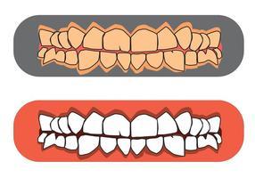 Vetores livres de dentes e gomas