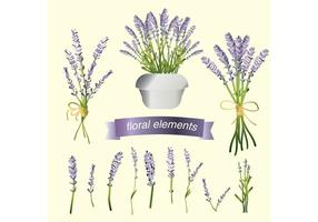Set Lavender Flower Vectors