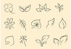 Sketchy Leaf Vector Set