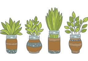Freie Mason Jar Vektoren