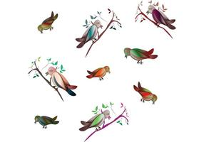 Petits oiseaux vectoriels
