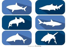 Long Shadow Shark Vectors