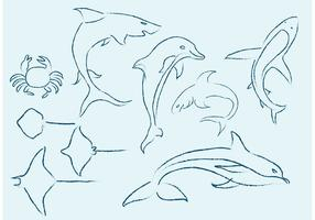Sea Life Sketches