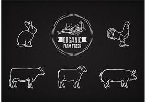 Vector Farm Animals On Chalkboard