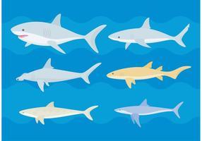 Vetores de tubarões