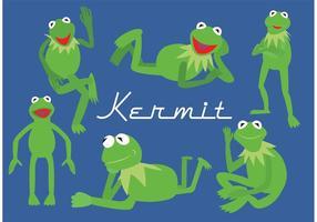 Kermit grodan
