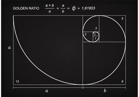 Vector de esquema de proporção Golden Ratio