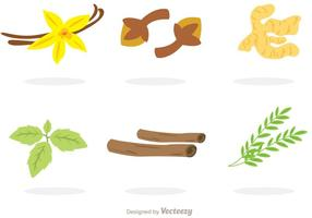 Collection Of Spices Vectors