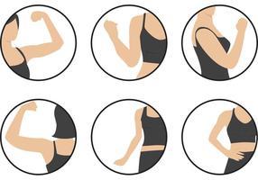 Ícones dos vetores do bíceps das mulheres