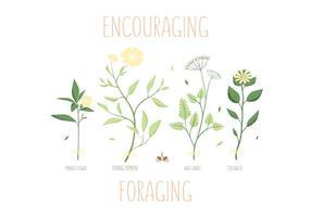 Forrajando Vectores de Hierba de Primavera