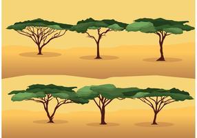 Akacia trädvektorer