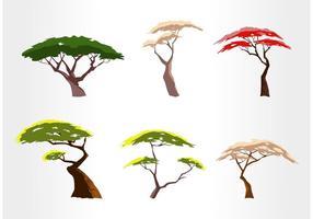 Juego de vectores gratis de árboles de acacia
