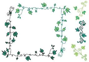 Série Ivy Vine Vector gratuite