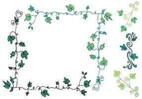 Free Ivy Vine Vector Serie