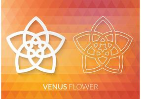 Pentagrama de flor Venus de vetores grátis