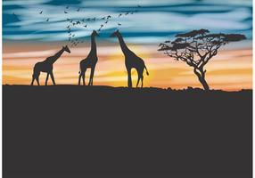 Acacia Tree and Giraffe Vector Background