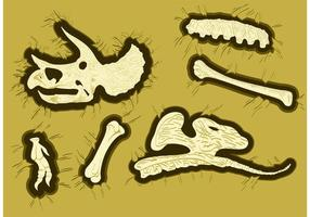 Dinosaur Bones Vectors