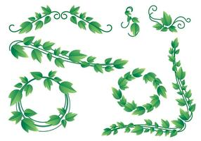 Lovely Ivy Vine Vectors