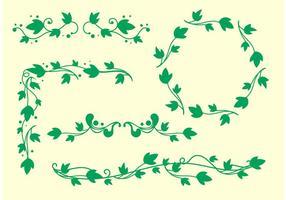 Vecteurs de vigne Ivy simples