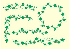 Vetores de videira Ivy simples