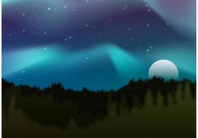 Northern Lights Vector Forest