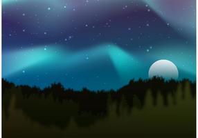 Floresta do vetor das luzes do norte
