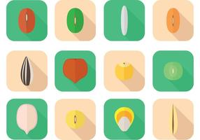 Verschiedene Seed-Vektoren